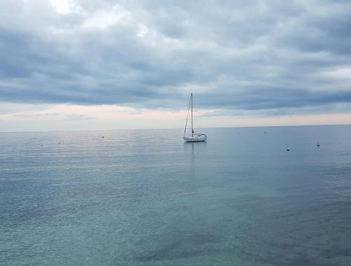 Préparer sa sortie en mer - Espace Bleu Sainte Maxime 83